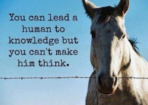 lead a human to think