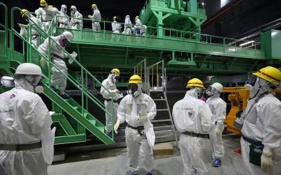 fukushima_111113-1024x640.jpg